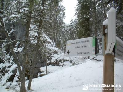 Senderismo Cañón del Río Lobos; Programa de actividades; Trekking